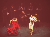 Flamenco